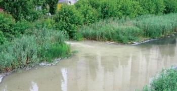 """Еколошки покрет Врбаса затражио да се """"Витал"""" затвори"""
