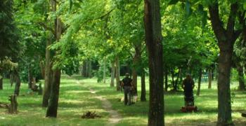 Ускоро нови засади у парку у улици Лазе Костића